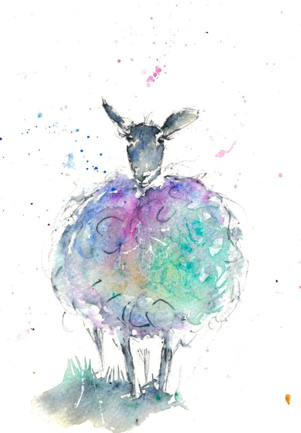 Watercolour and ink sheep art